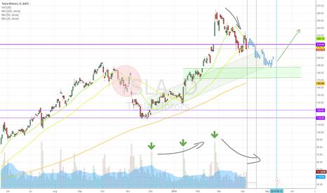 TSLA: Tesla Consolidation