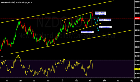 NZDCAD: NZDCAD price action