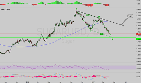 SUGARUSD: SugarUSD - ABCD Harmonic At Support
