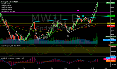MW1!: MW1! @ daily @ closed last 8 days higher, while every day