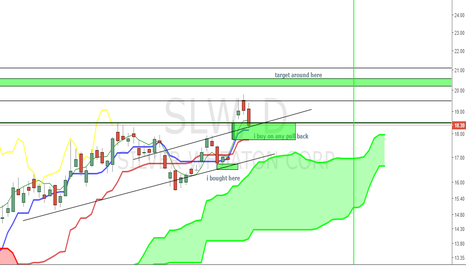 SLW: SLW Please dip so I can buy more!