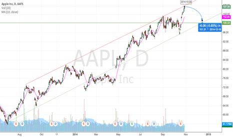 AAPL: Bearish on AAPL