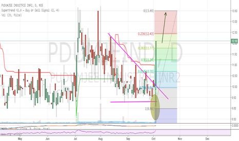 PDUMJEIND: PUDUMJEE INDUSTRIES LTD- Huge breakout with huge volumes.