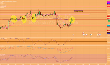 USDCAD: need to wait the reaction around the 15'resistance...