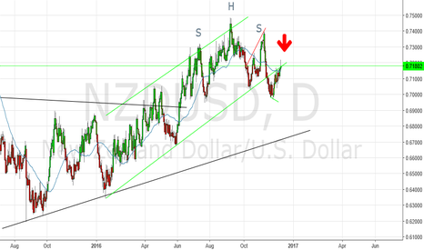 NZDUSD: NZD/USD short! Daily time frame.