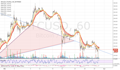 BTCUSD: How beautiful! Gentle giant coasting back on the old trail.