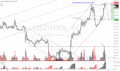 USDMXN: USDMXN Sell False breakout/low volume test