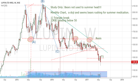 LUPIN: Study only: Bears sure to report to Camp T !