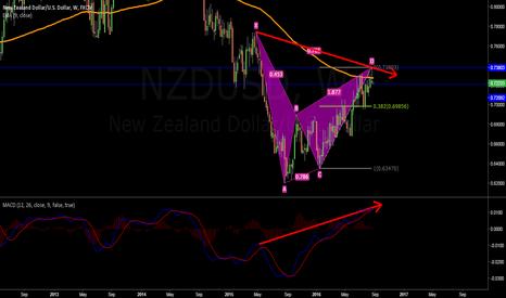 NZDUSD: BAT AGAINST KIWI.. WHO IS GOING TO WIN ?