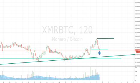 XMRBTC: Maybe it is working ...