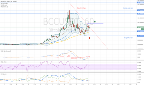 BCCUSDT: Bitcoin Cash One More Time