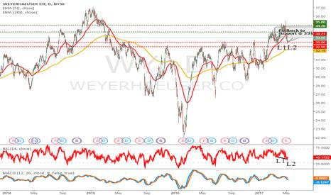 WY: Weyerhaeuser an attractive buy