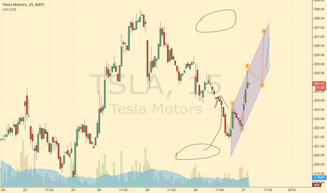 TSLA: Small Wave its only testing