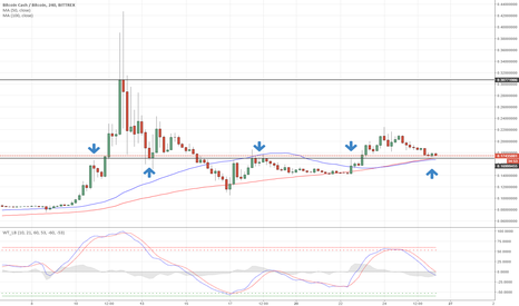BCCBTC: BCC/BTC looking for long @ 0.17 - potential ROI 100%+ !!!