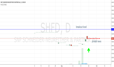 SHF: big pic breakout on ger small cap SNP Schneider-Neureither