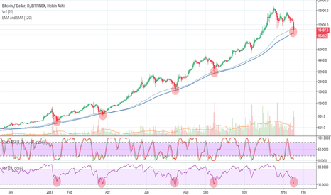 BTCUSD: BTC Historical Crashes