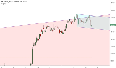 USDJPY: Hopefully much needed correction in the works