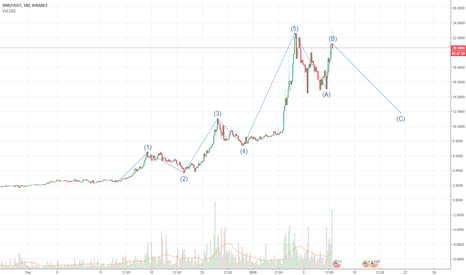 BNBUSDT: BNB making elliot wave to 23$$ in correction phase