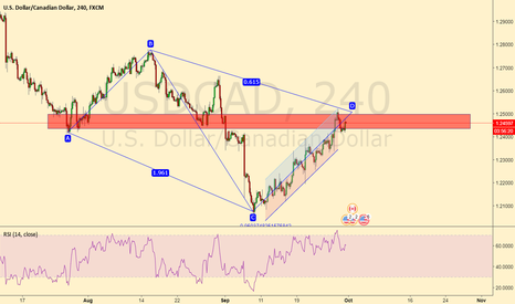 USDCAD: USDCAD COMPLETING AB=CD