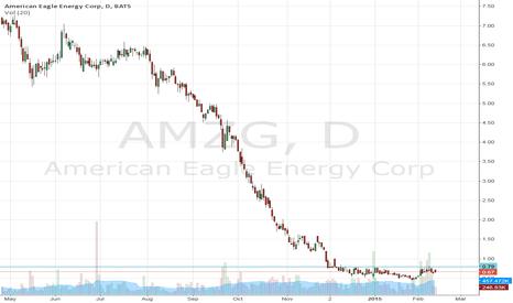 AMZG: AMZG – buy!