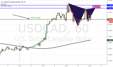 USDCAD: Potential Gartley USD/CAD