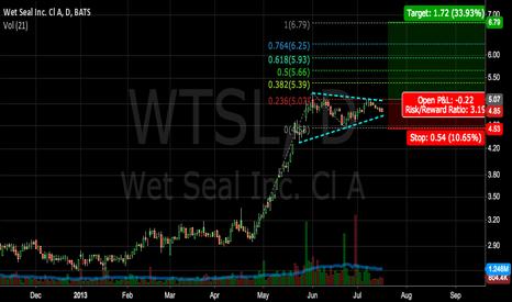 WTSL: WTSL Bullish Flag