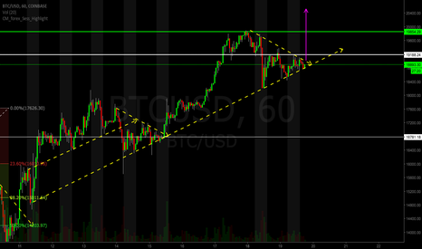 BTCUSD: POTENTIAL LONG ON BTC