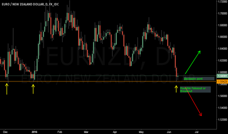 EURNZD: eurnzd at my decission point