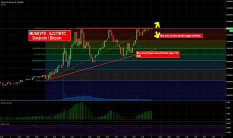 SJCXBTC: Will the top be the new low?