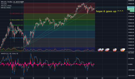 BTCUSD: Looks like BTC will go up ....but who knows