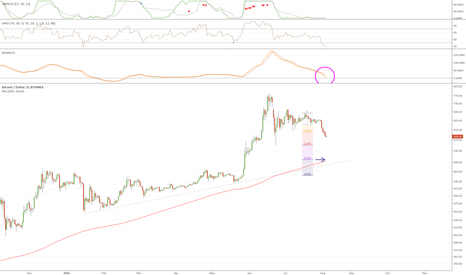BTCUSD: Bitfinex - Beat them with the Rod of Correction