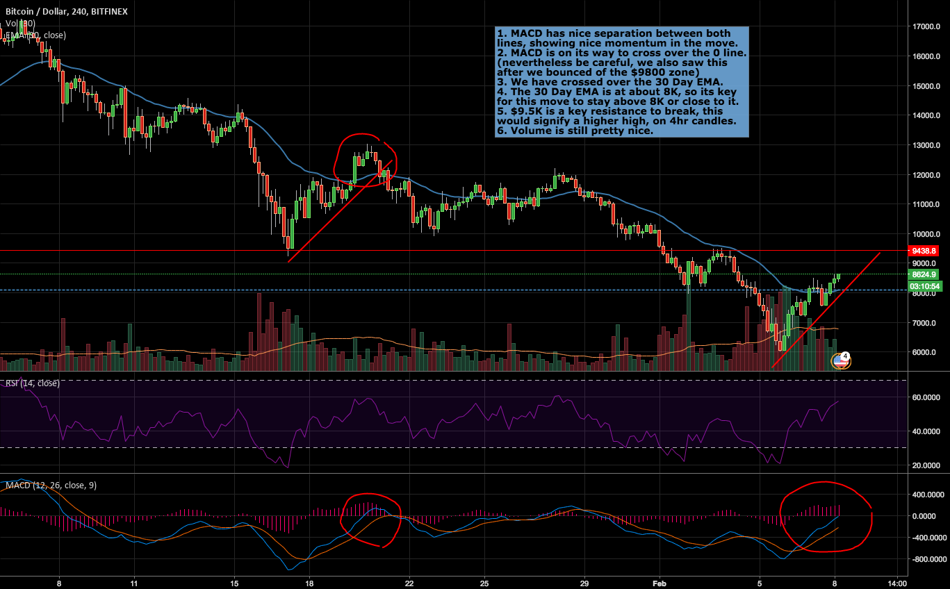 Is this the BTC bounce we've all been waiting for?