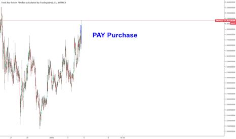 PAYUSD: TenX Pay Buy
