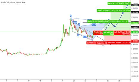 BCHBTC: bitcoincash bchbtc