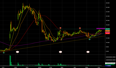 WTW: $WTW posible long that could make a nice short squeeze