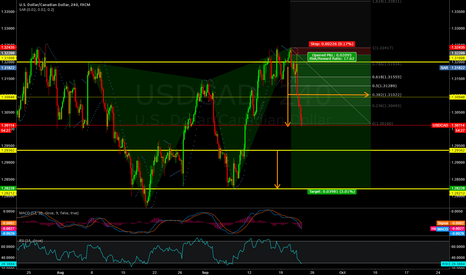 USDCAD: 1785 points so far, continue in SHORT.
