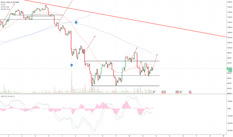 BTCUSD: BTC:USD 1 hour chart DAILY UPDATE (day 20)