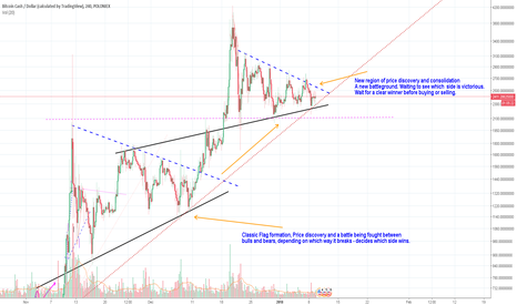 BCHUSD: BitcoinCash/USD - Moment of Truth approaches