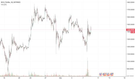 BCHUSD: For Beginner Investors..