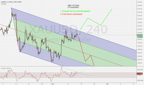 XAUUSD: US Data will manage the direction XAU/USD 14/8/14