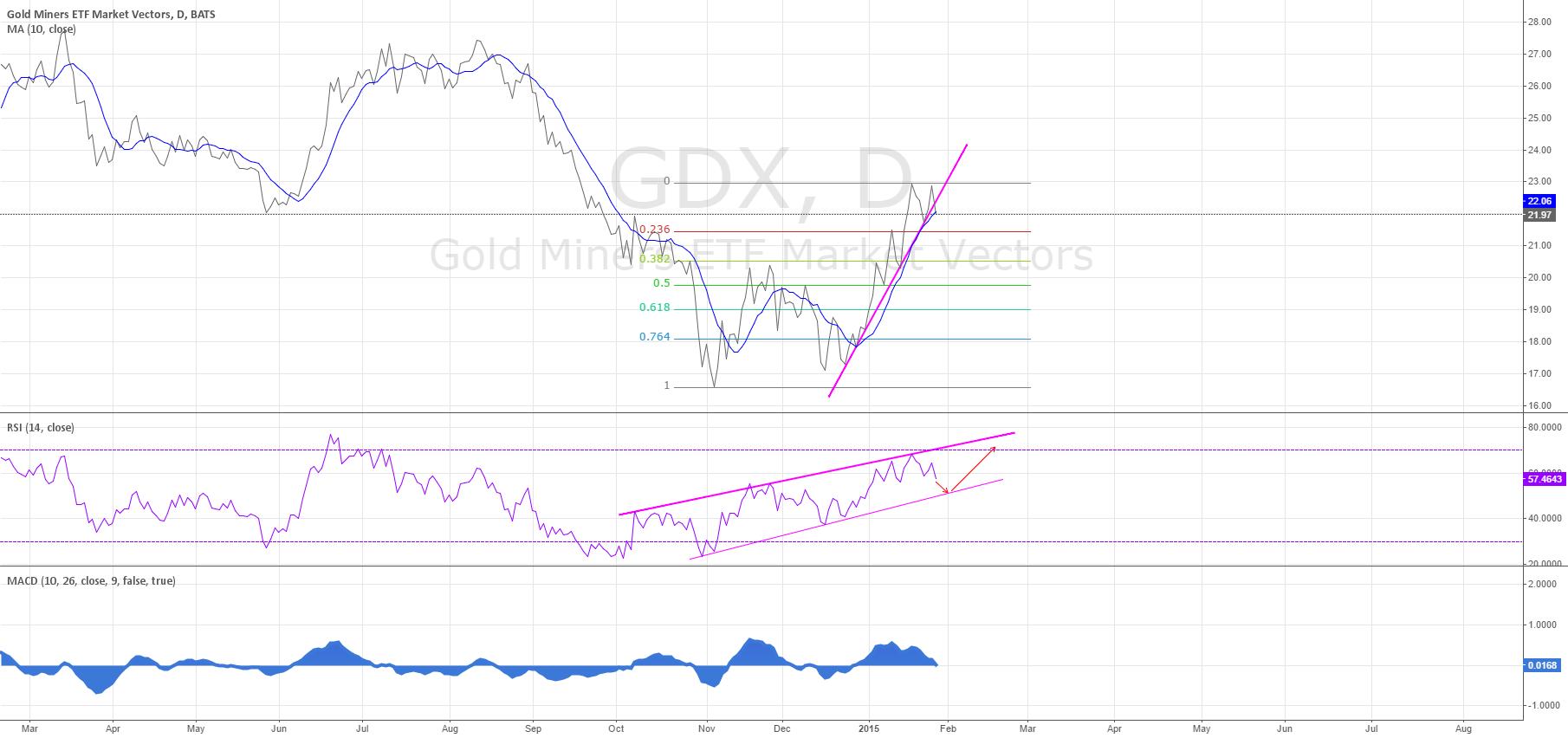 GDX update - short term weakness - 1/29/2015