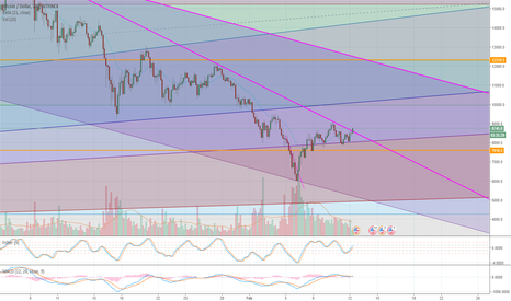 BTCUSD: BTCUSD broke through resistant line