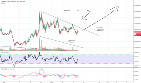 PAYBTC: PAY/BTC Long, Big swing trade potential