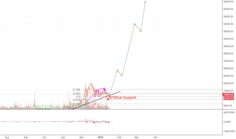 BTCUSD: Bitcoin Skyrockets To $50,000,000,000,000! Trolling Haters! >=D