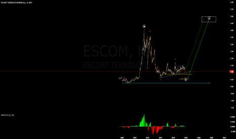 ESCOM: alım icin bekliyoruz