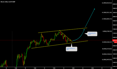 BTCUSD: BTCUSD 20K Target is active if not in watch bottom for buy