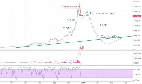 BTCUSD: BLOW OFF PHASE? speculative bubble scheme.