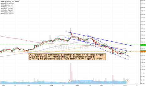 LCI: LCI - Looking for Nov/ Dec $25 calls
