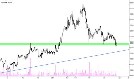 BDX: Budimex – blisko 3 letniej linii trendu