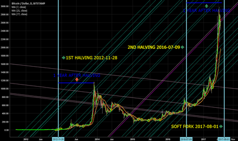 BTCUSD: Bitcoin halving pattern: 1 year of growth, 3 of pain